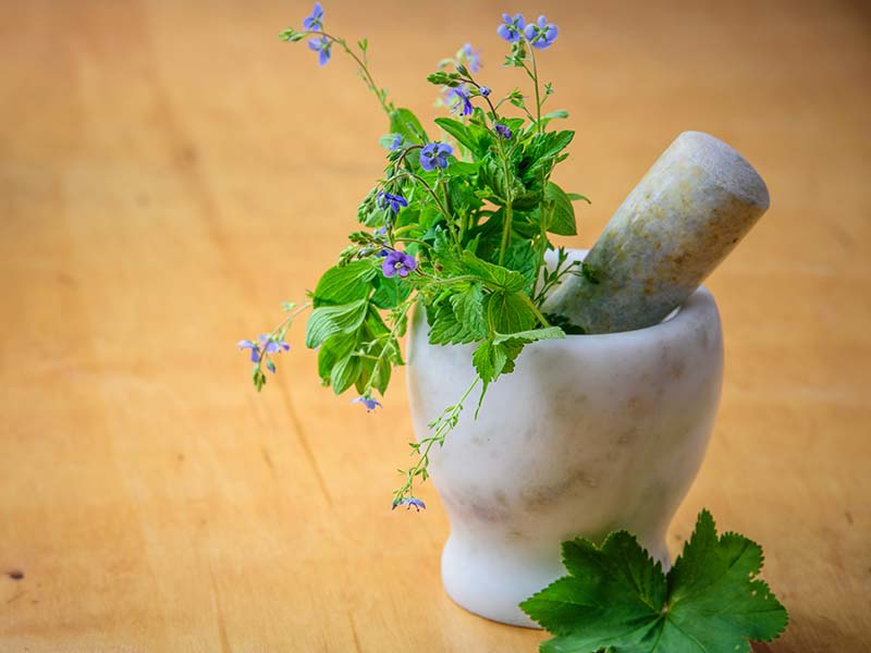 chinese herbal medicine clinic